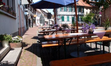 gallery_restaurant (2)
